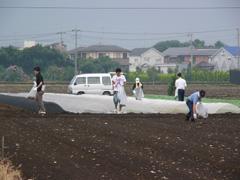 20060826hanabi 129.jpg
